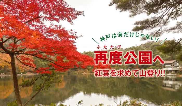 神戸は海だけじゃない!再度公園へ紅葉を求めて山登り!!