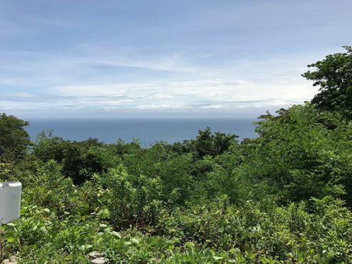 海側敷地 (1)